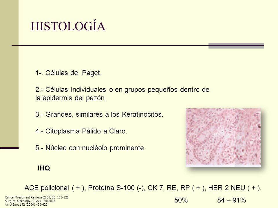 HISTOLOGÍA 1-. Células de Paget. 2.- Células Individuales o en grupos pequeños dentro de la epidermis del pezón. 3.- Grandes, similares a los Keratino