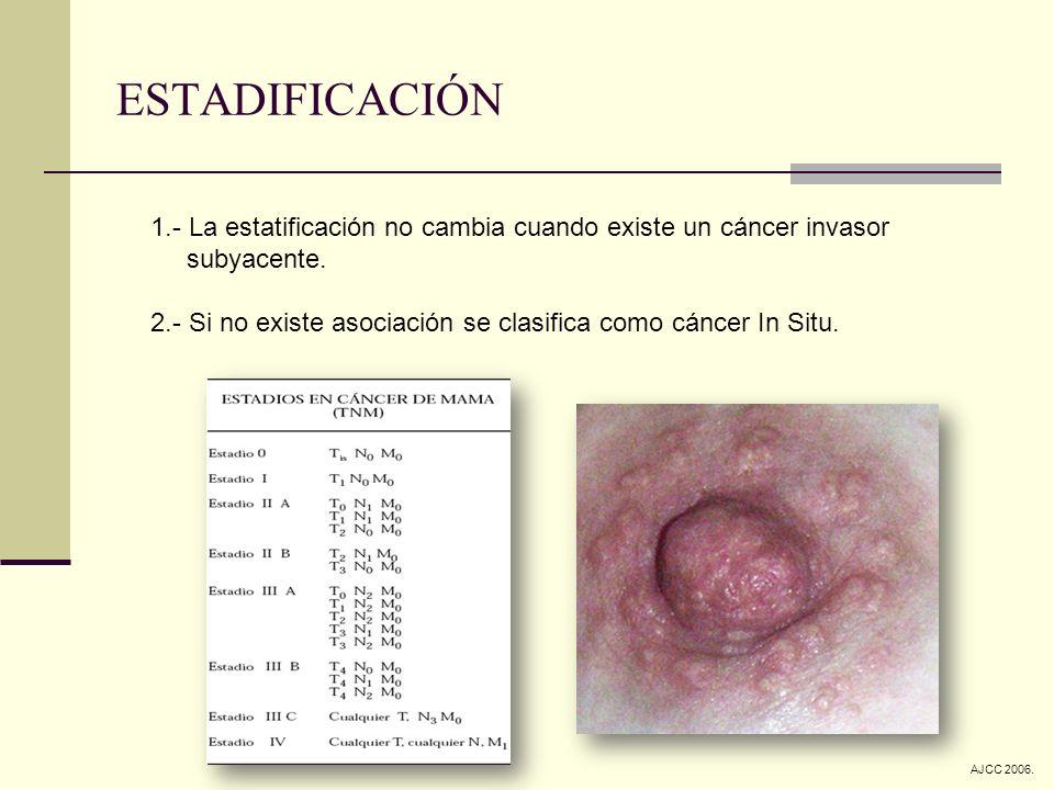 ESTADIFICACIÓN 1.- La estatificación no cambia cuando existe un cáncer invasor subyacente. 2.- Si no existe asociación se clasifica como cáncer In Sit