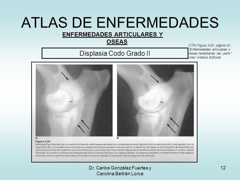 Dr. Carlos González Fuertes y Carolina Beltrán Lorca 12 ATLAS DE ENFERMEDADES ENFERMEDADES ARTICULARES Y OSEAS Displasia Codo Grado II CITA: Figura 3-