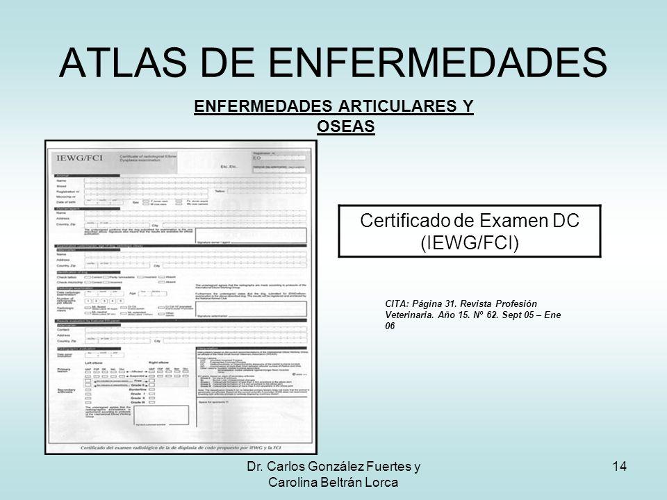 Dr. Carlos González Fuertes y Carolina Beltrán Lorca 14 ATLAS DE ENFERMEDADES ENFERMEDADES ARTICULARES Y OSEAS Certificado de Examen DC (IEWG/FCI) CIT
