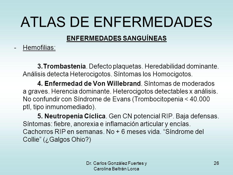 Dr. Carlos González Fuertes y Carolina Beltrán Lorca 26 ENFERMEDADES SANGUÍNEAS -Hemofilias: 3.Trombastenia. Defecto plaquetas. Heredabilidad dominant