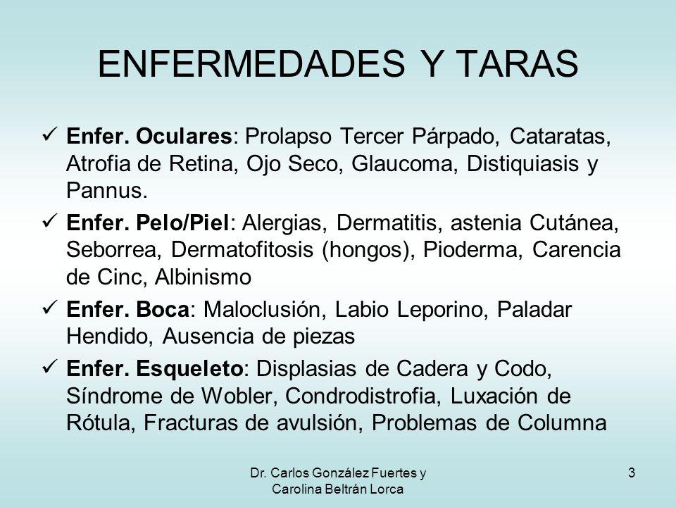 Dr. Carlos González Fuertes y Carolina Beltrán Lorca 3 Enfer. Oculares: Prolapso Tercer Párpado, Cataratas, Atrofia de Retina, Ojo Seco, Glaucoma, Dis