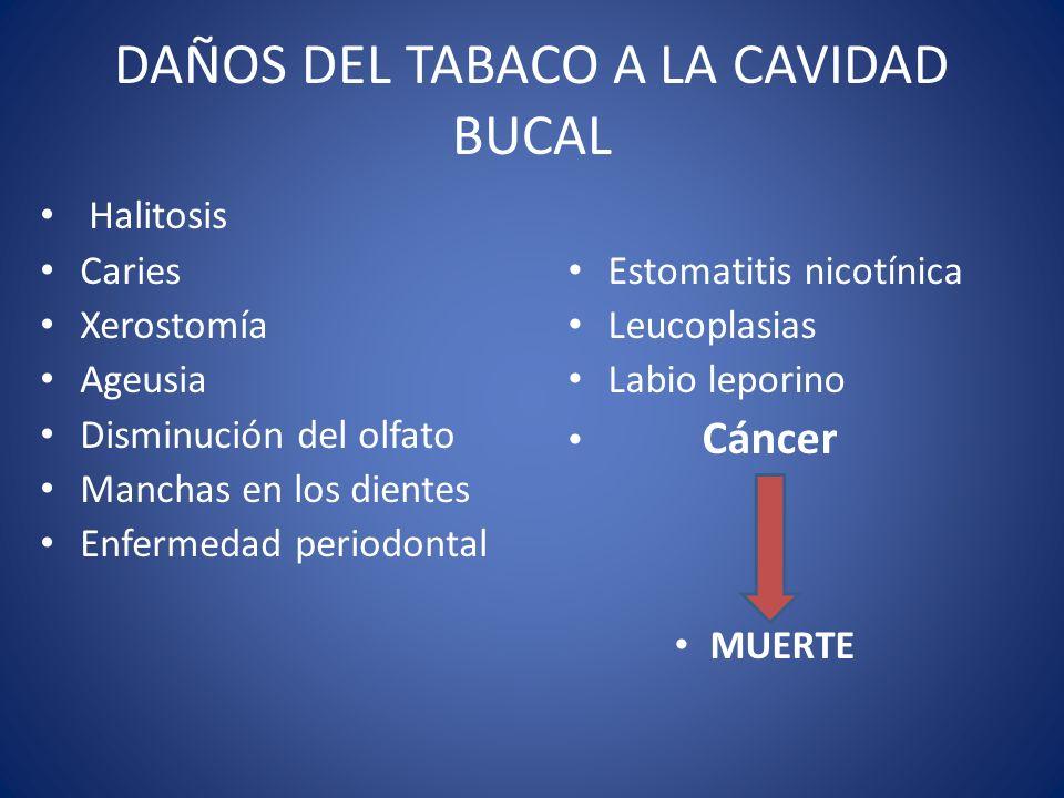 DAÑOS DEL TABACO A LA CAVIDAD BUCAL Halitosis Caries Xerostomía Ageusia Disminución del olfato Manchas en los dientes Enfermedad periodontal Estomatit
