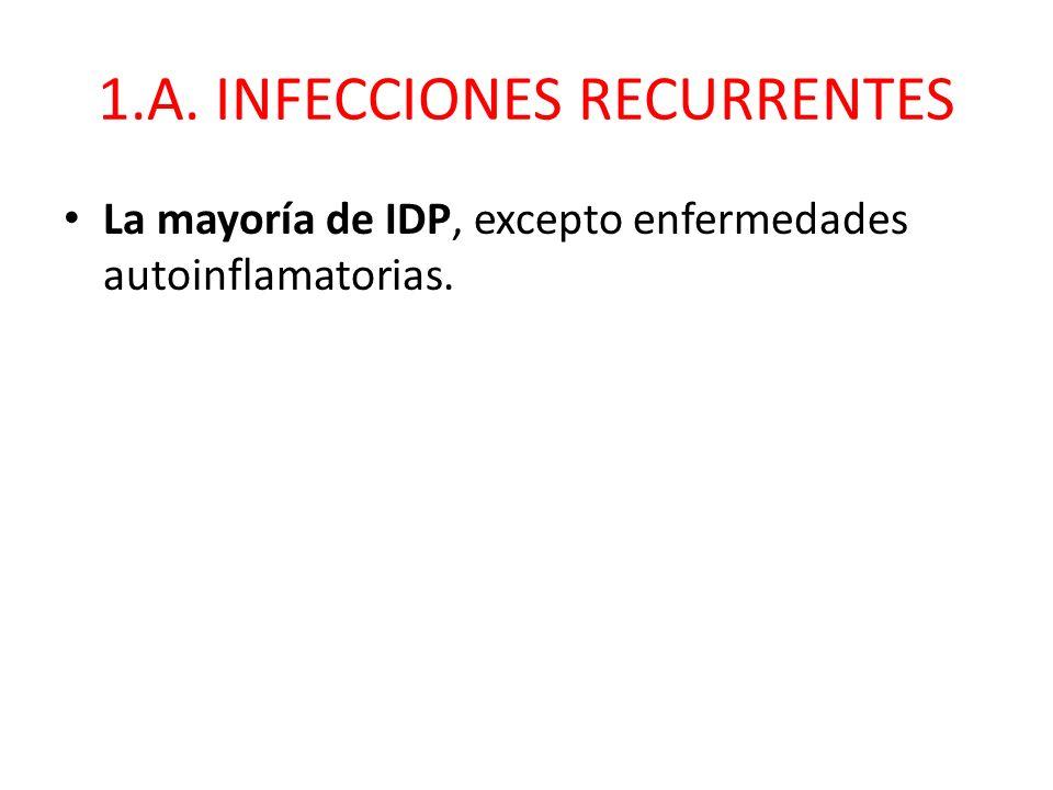 1.A. INFECCIONES RECURRENTES La mayoría de IDP, excepto enfermedades autoinflamatorias.