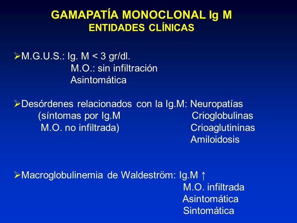 GAMAPATÍA MONOCLONAL Ig M ENTIDADES CLÍNICAS M.G.U.S.: Ig. M < 3 gr/dl. M.O.: sin infiltración Asintomática Desórdenes relacionados con la Ig.M: Neuro