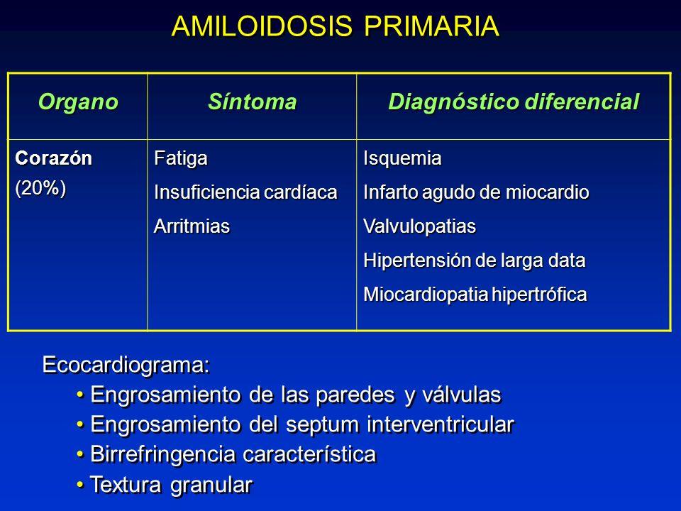 AMILOIDOSIS PRIMARIA Ecocardiograma: Engrosamiento de las paredes y válvulas Engrosamiento del septum interventricular Birrefringencia característica