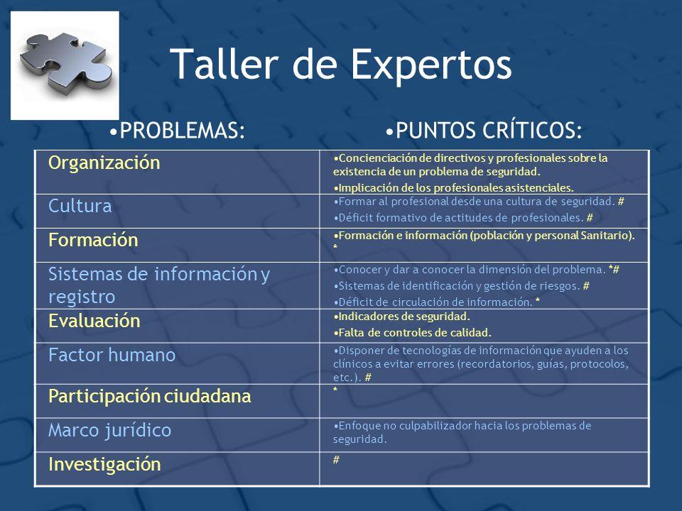 Taller de Expertos PROBLEMAS:PUNTOS CRÍTICOS: Organización Concienciación de directivos y profesionales sobre la existencia de un problema de seguridad.