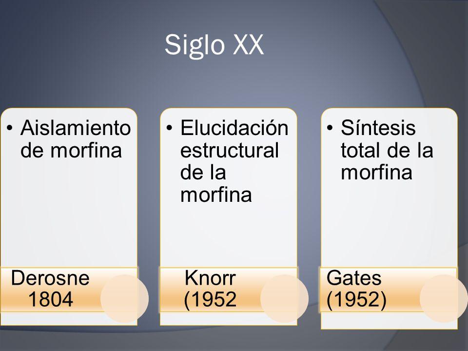Siglo XX Aislamiento de morfina Derosne 1804 Elucidación estructural de la morfina Knorr (1952 Síntesis total de la morfina Gates (1952)