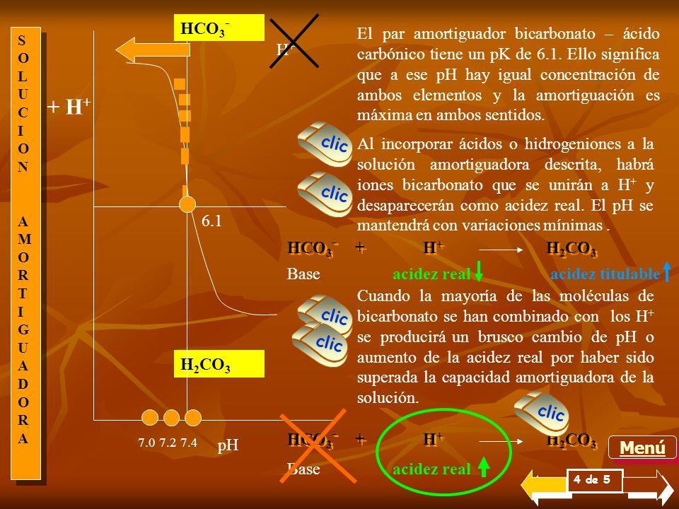 SOLUCIONAMORTIGUADORASOLUCIONAMORTIGUADORA SOLUCIONAMORTIGUADORASOLUCIONAMORTIGUADORA Un aspecto importante de la capacidad amortiguadora de una soluc