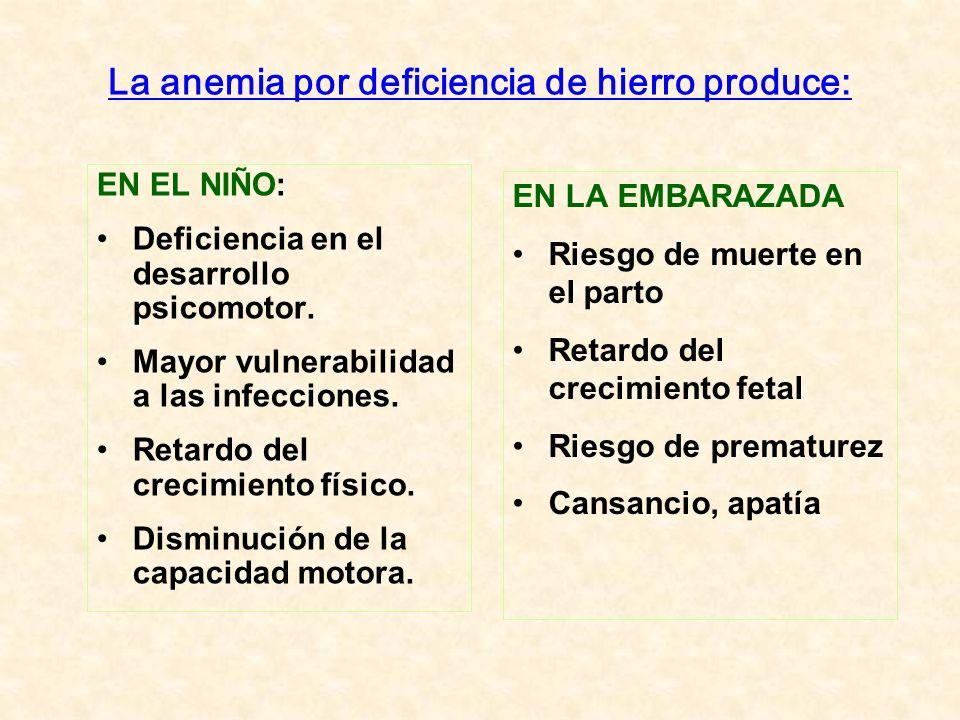 La anemia por deficiencia de hierro produce: EN EL NIÑO: Deficiencia en el desarrollo psicomotor. Mayor vulnerabilidad a las infecciones. Retardo del