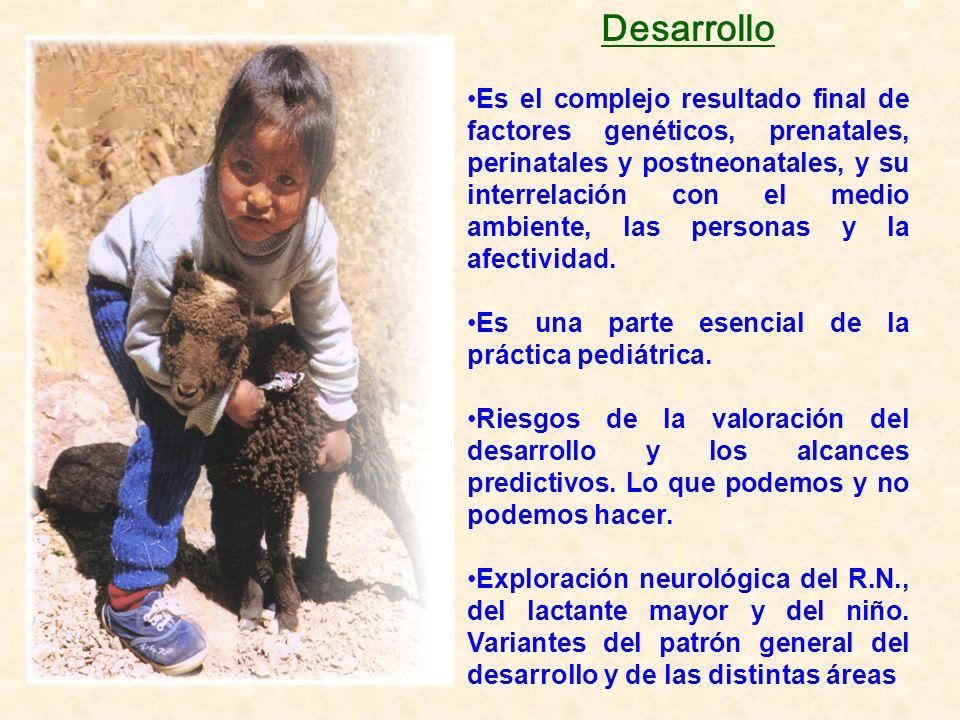 Desarrollo Es el complejo resultado final de factores genéticos, prenatales, perinatales y postneonatales, y su interrelación con el medio ambiente, l