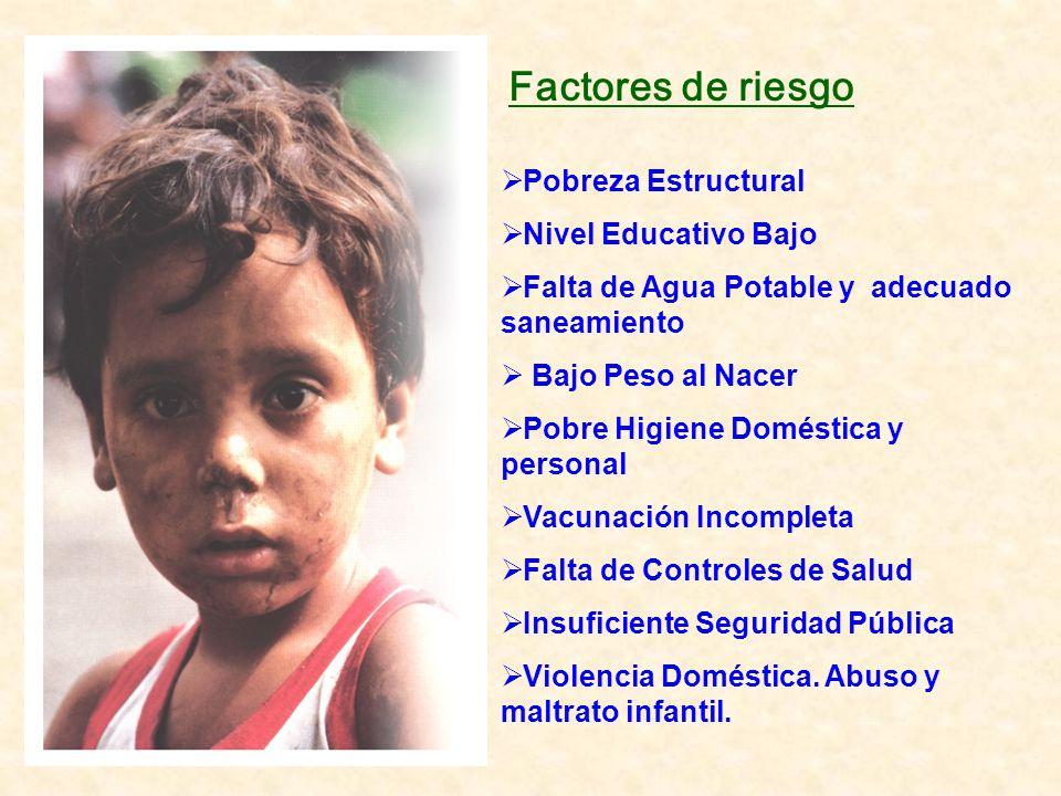 Pobreza Estructural Nivel Educativo Bajo Falta de Agua Potable y adecuado saneamiento Bajo Peso al Nacer Pobre Higiene Doméstica y personal Vacunación