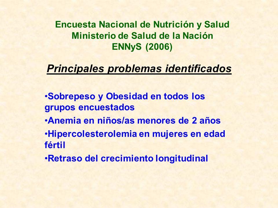 Encuesta Nacional de Nutrición y Salud Ministerio de Salud de la Nación ENNyS (2006) Principales problemas identificados Sobrepeso y Obesidad en todos