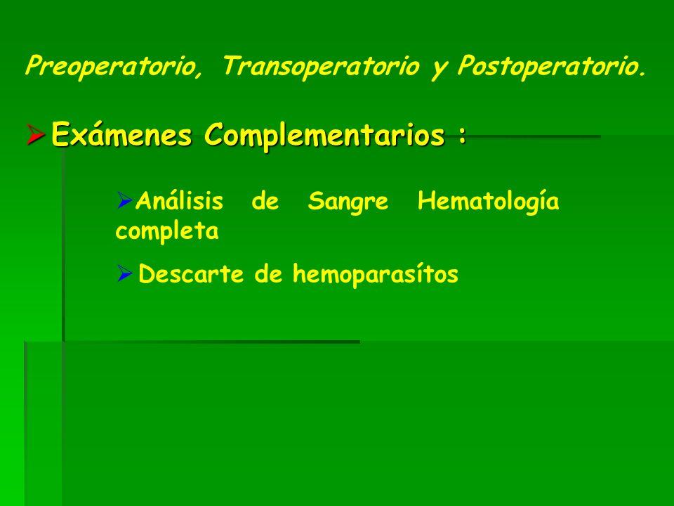Exámenes Complementarios : Exámenes Complementarios : Preoperatorio, Transoperatorio y Postoperatorio.
