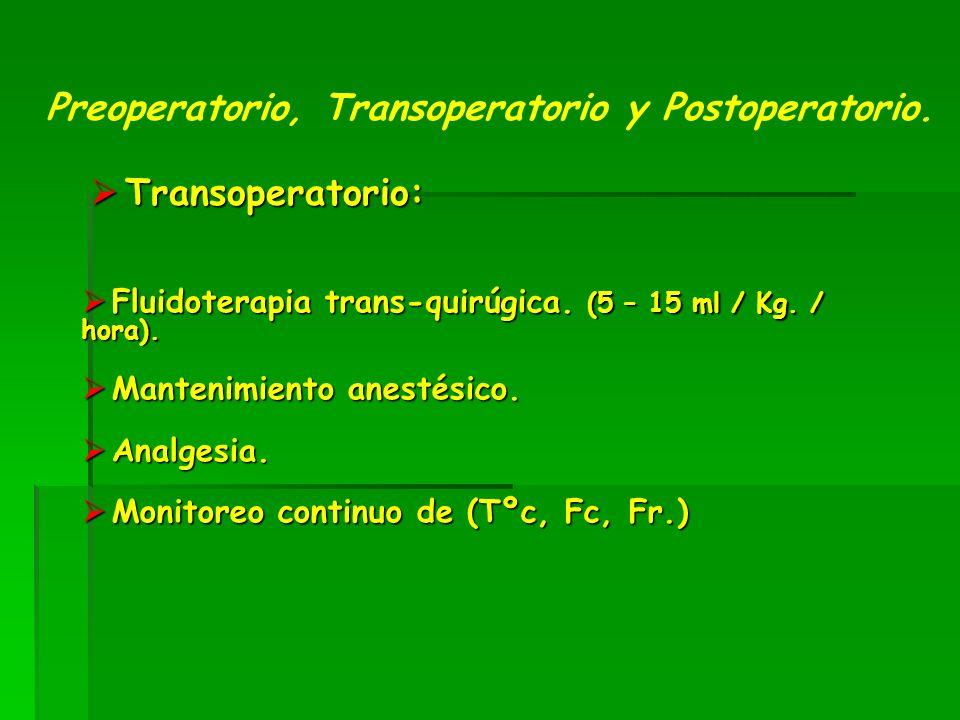 Transoperatorio: Transoperatorio: Preoperatorio, Transoperatorio y Postoperatorio.