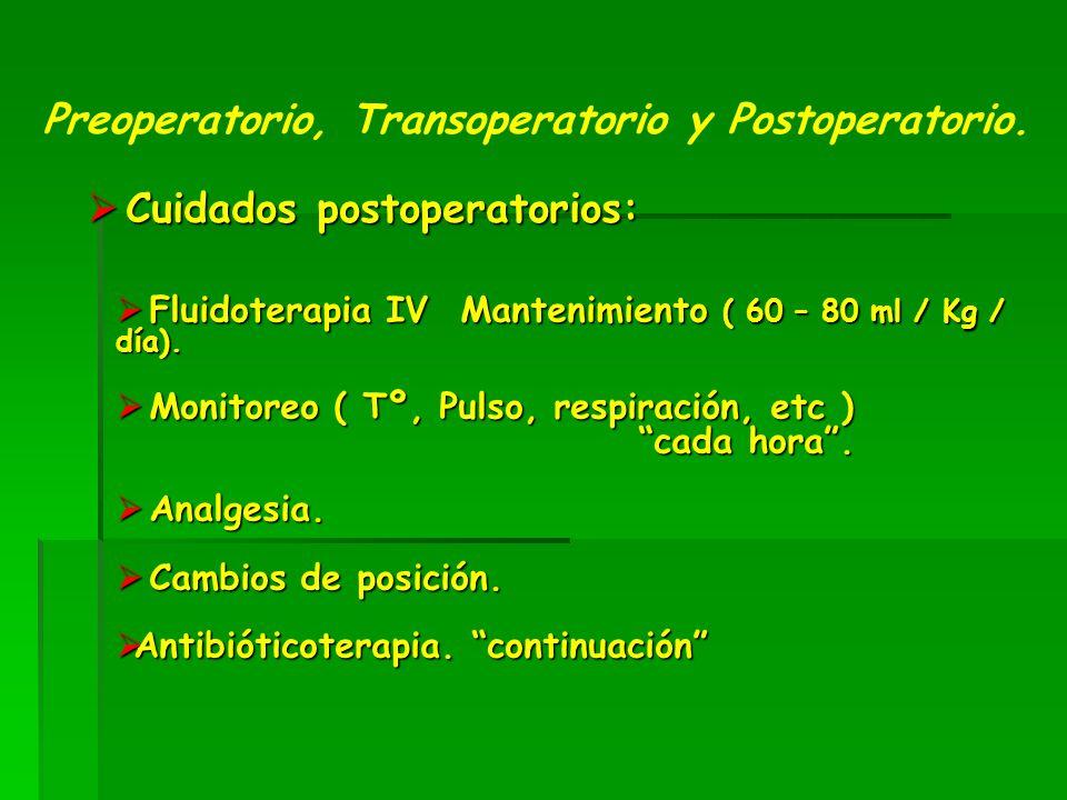 Cuidados postoperatorios: Cuidados postoperatorios: Preoperatorio, Transoperatorio y Postoperatorio.