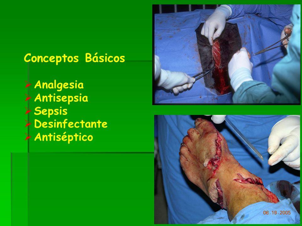 Conceptos Básicos Analgesia Antisepsia Sepsis Desinfectante Antiséptico