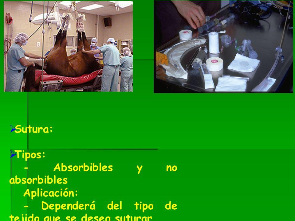 Sutura: Tipos: - Absorbibles y no absorbibles Aplicación: - Dependerá del tipo de tejido que se desea suturar
