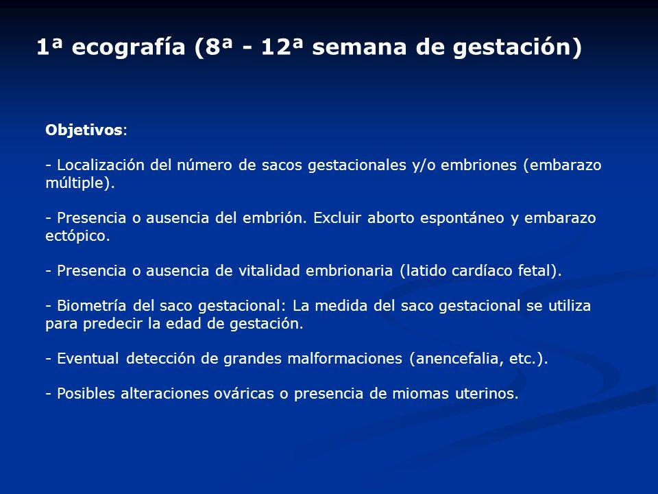 1ª ecografía (8ª - 12ª semana de gestación) Objetivos: - Localización del número de sacos gestacionales y/o embriones (embarazo múltiple). - Presencia