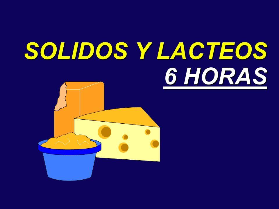 SOLIDOS Y LACTEOS 6 HORAS