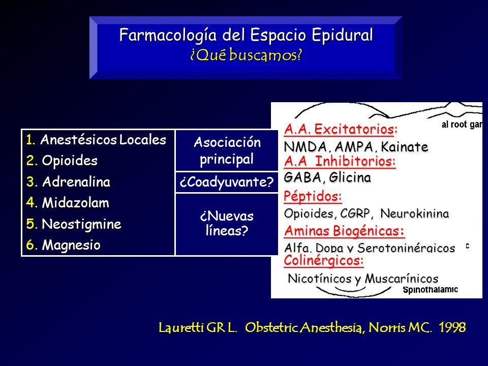 Farmacología del Espacio Epidural ¿Qué buscamos? Lauretti GR L. Obstetric Anesthesia, Norris MC. 1998 6.Magnesio 6. Magnesio ¿Coadyuvante? 3.Adrenalin
