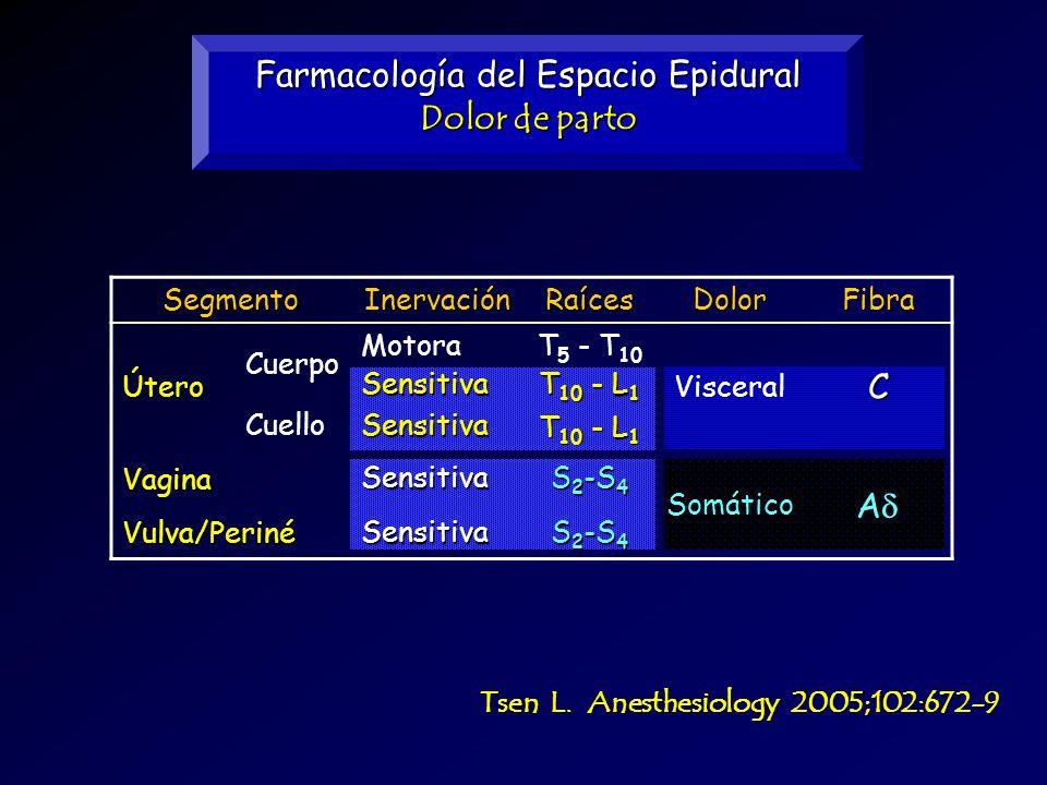 Farmacología del Espacio Epidural Dolor de parto Tsen L. Anesthesiology 2005;102:672-9 SegmentoInervaciónRaícesDolorFibraÚtero Cuerpo MotoraT 5 - T 10