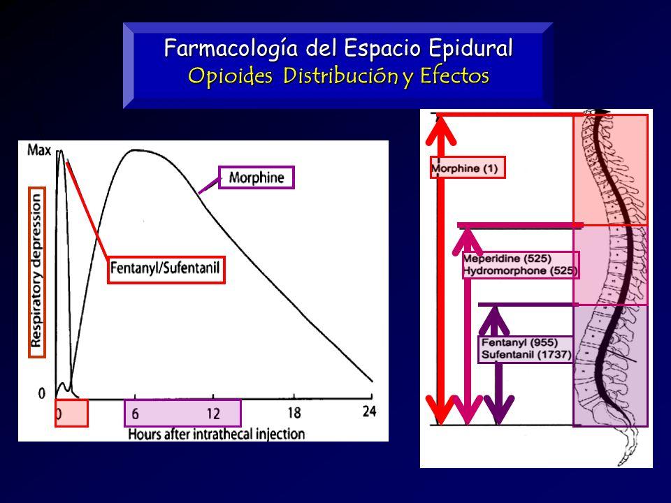 Farmacología del Espacio Epidural Opioides Distribución y Efectos