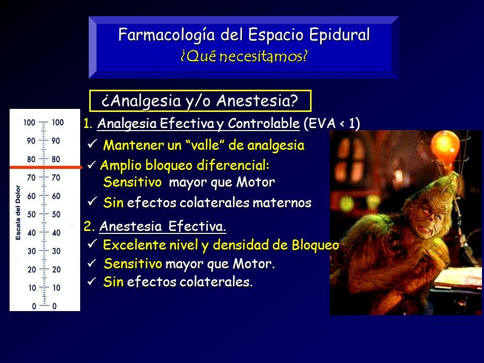 Farmacología del Espacio Epidural ¿Qué necesitamos? Analgesia Efectiva y Controlable (EVA < 1) 1. Analgesia Efectiva y Controlable (EVA < 1) ¿Analgesi