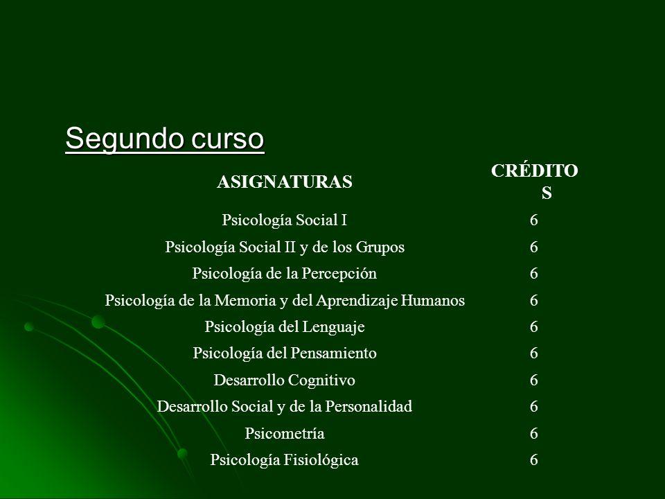 Segundo curso ASIGNATURAS CRÉDITO S Psicología Social I6 Psicología Social II y de los Grupos6 Psicología de la Percepción6 Psicología de la Memoria y