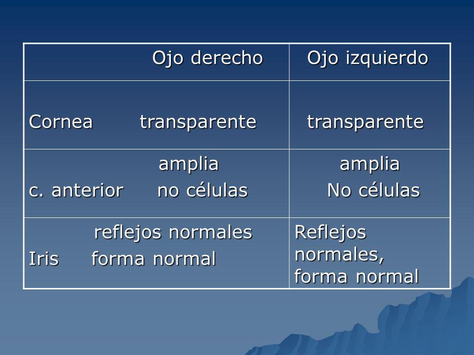 Ojo derecho Ojo derecho Ojo izquierdo Ojo izquierdo Cornea transparente transparente transparente amplia amplia c. anterior no células amplia amplia N
