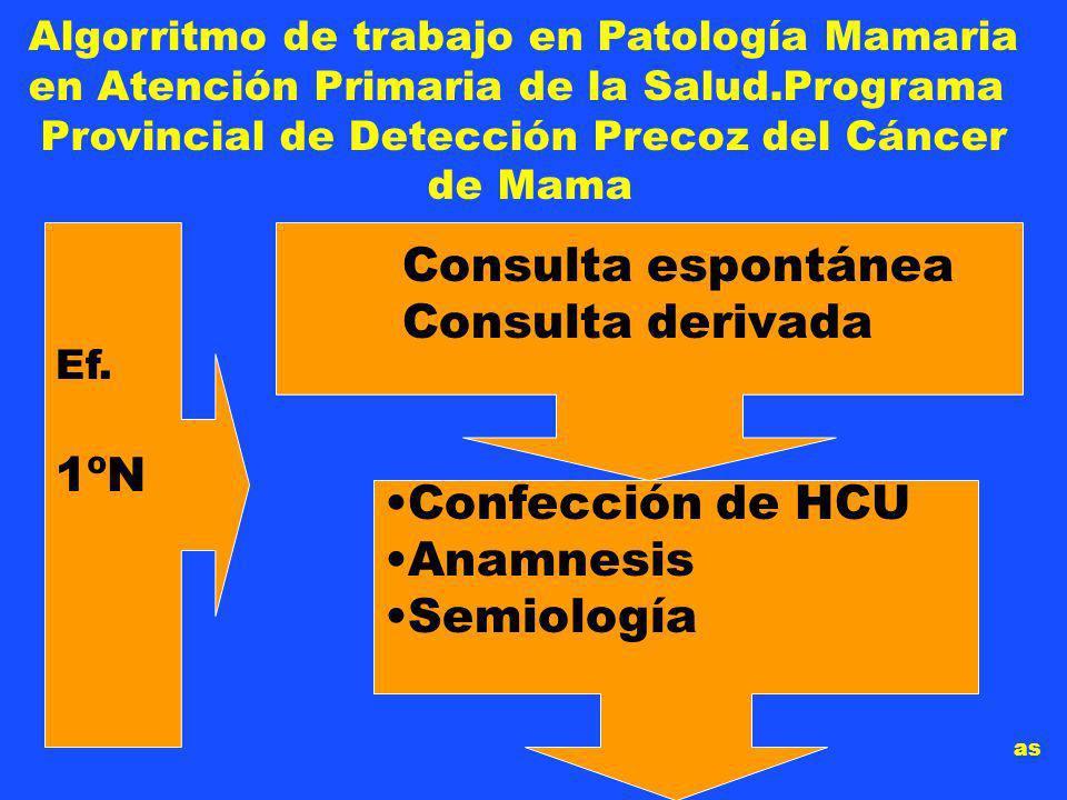 Consulta espontánea Consulta derivada Confección de HCU Anamnesis Semiología Algorritmo de trabajo en Patología Mamaria en Atención Primaria de la Salud.Programa Provincial de Detección Precoz del Cáncer de Mama Ef.