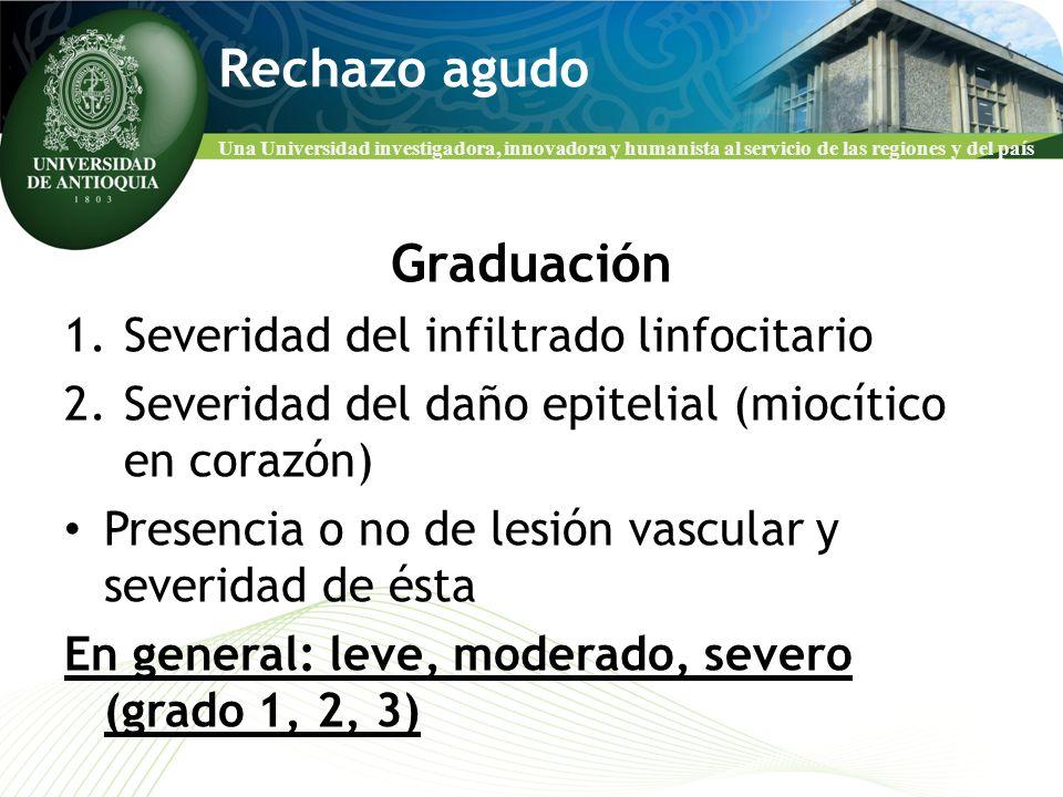 Una Universidad investigadora, innovadora y humanista al servicio de las regiones y del país Rechazo agudo Graduación 1.Severidad del infiltrado linfo