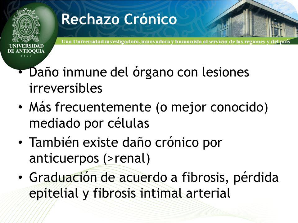 Una Universidad investigadora, innovadora y humanista al servicio de las regiones y del país Rechazo Crónico Daño inmune del órgano con lesiones irrev