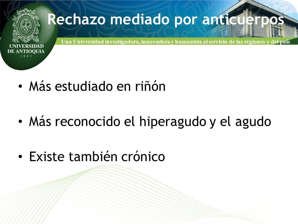 Una Universidad investigadora, innovadora y humanista al servicio de las regiones y del país Rechazo mediado por anticuerpos Más estudiado en riñón Má