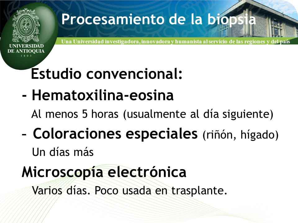 Una Universidad investigadora, innovadora y humanista al servicio de las regiones y del país Biopsia del injerto ¿Para qué.