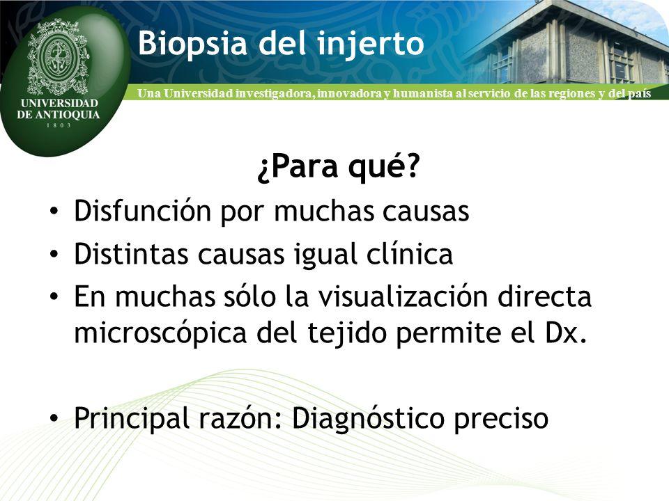 Una Universidad investigadora, innovadora y humanista al servicio de las regiones y del país Biopsia del injerto ¿Para qué? Disfunción por muchas caus
