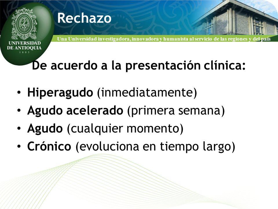 Una Universidad investigadora, innovadora y humanista al servicio de las regiones y del país Rechazo De acuerdo a la presentación clínica: Hiperagudo
