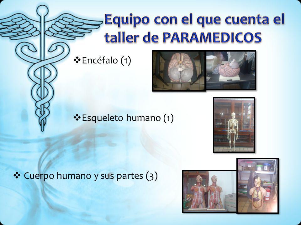 Encéfalo (1) Esqueleto humano (1) Cuerpo humano y sus partes (3)