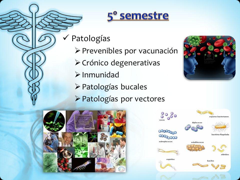 Patologías Prevenibles por vacunación Crónico degenerativas Inmunidad Patologías bucales Patologías por vectores