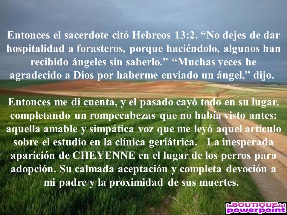 Entonces el sacerdote citó Hebreos 13:2. No dejes de dar hospitalidad a forasteros, porque haciéndolo, algunos han recibido ángeles sin saberlo. Mucha