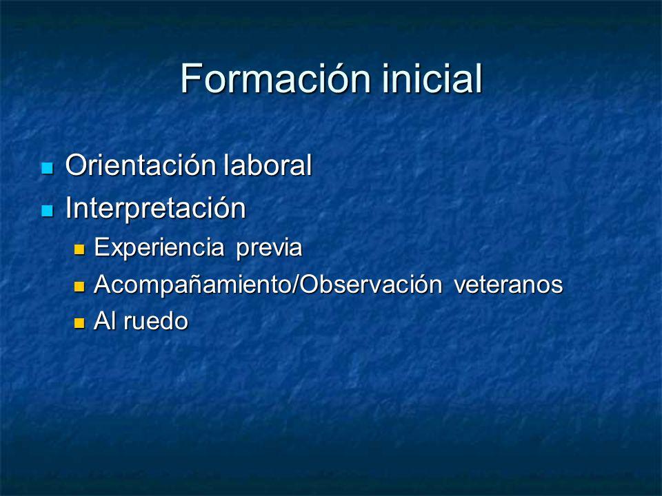 Formación inicial Orientación laboral Orientación laboral Interpretación Interpretación Experiencia previa Experiencia previa Acompañamiento/Observaci