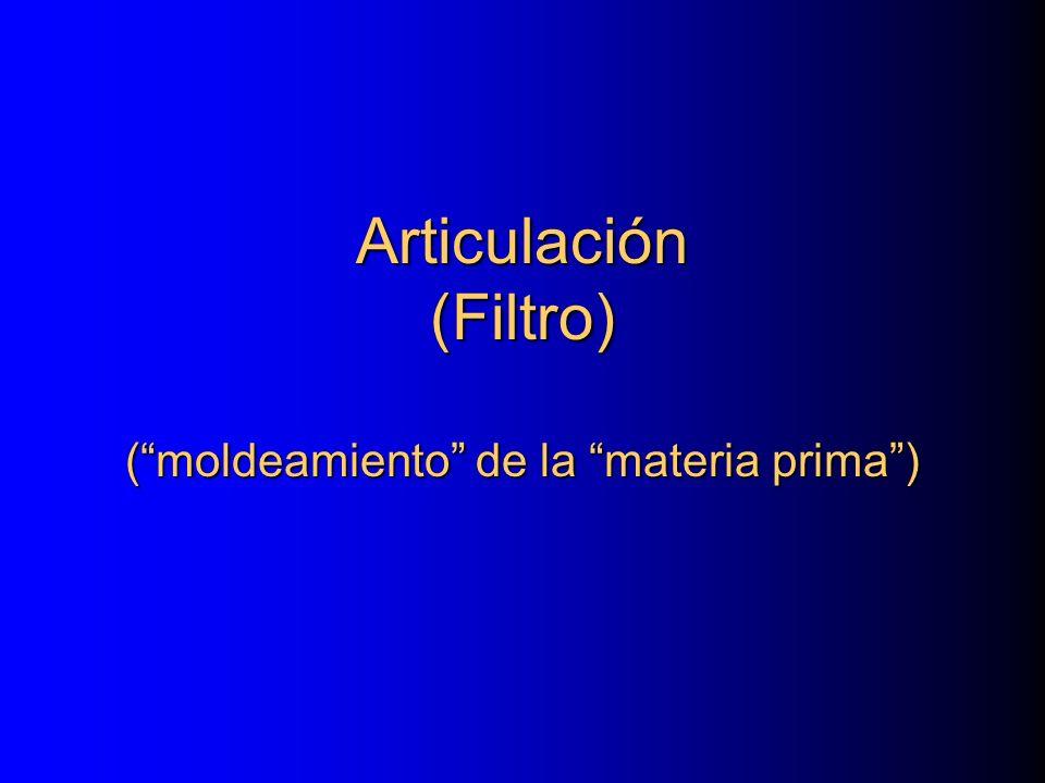 Articulación (Filtro) (moldeamiento de la materia prima)