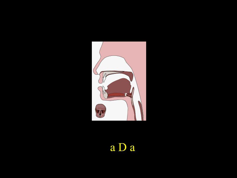 a D a