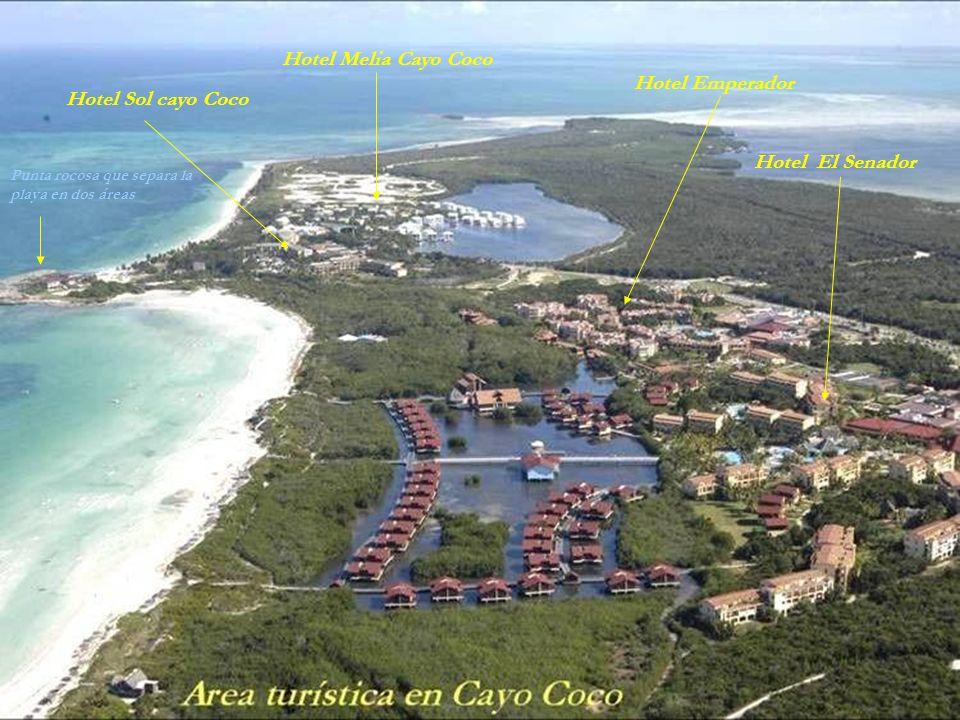 Cayo Coco Paralelo a la linea de la playa,y no muy lejos de ella, se fueron construyendo los complejos hoteleros que se señalan en la figura