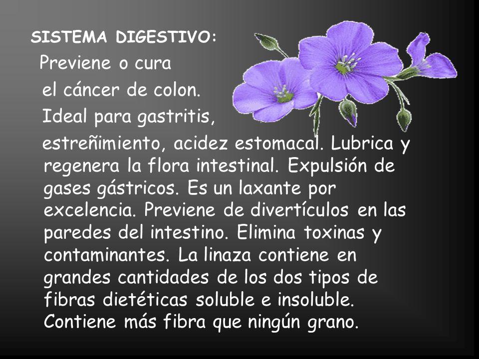SISTEMA DIGESTIVO: Previene o cura el cáncer de colon.