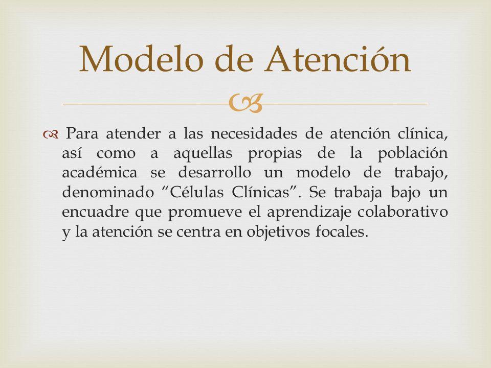 Para atender a las necesidades de atención clínica, así como a aquellas propias de la población académica se desarrollo un modelo de trabajo, denomina