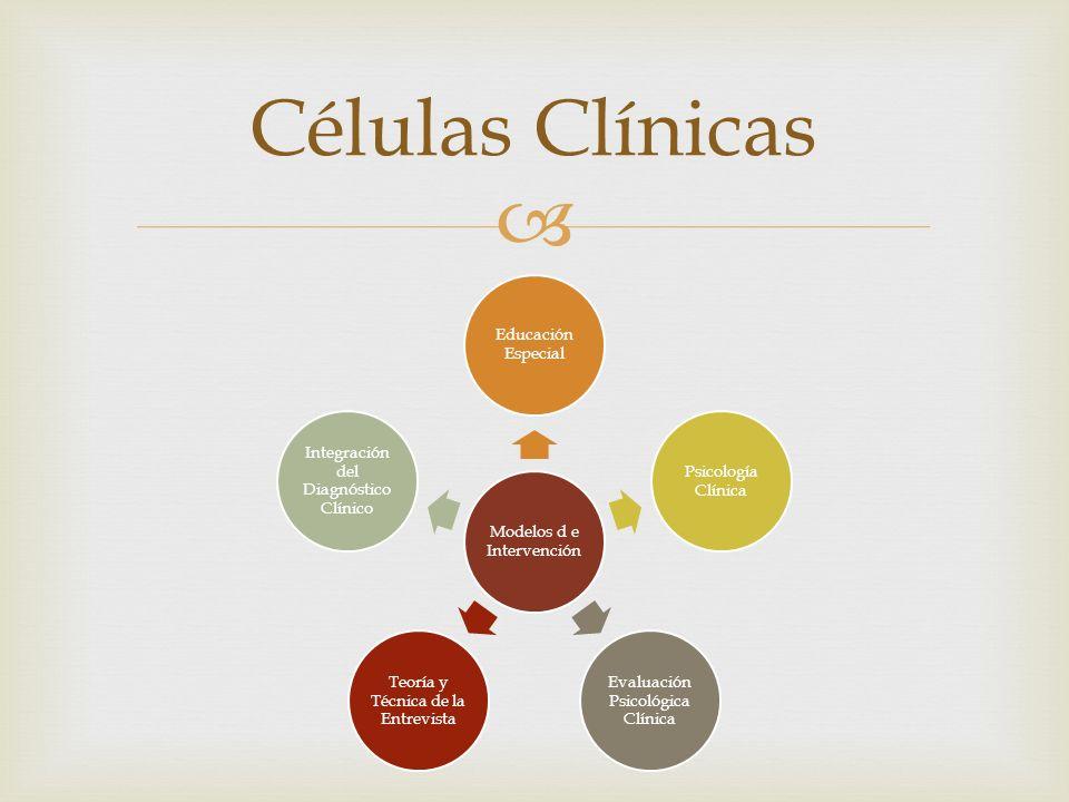 Células Clínicas Modelos d e Intervención Educación Especial Psicología Clínica Evaluación Psicológica Clínica Teoría y Técnica de la Entrevista Integ