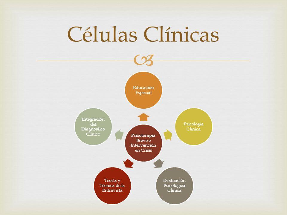 Células Clínicas Terapia de Pareja y Familia Educación Especial Psicología Clínica Evaluación Psicológica Clínica Teoría y Técnica de la Entrevista Integración del Diagnóstico Clínico