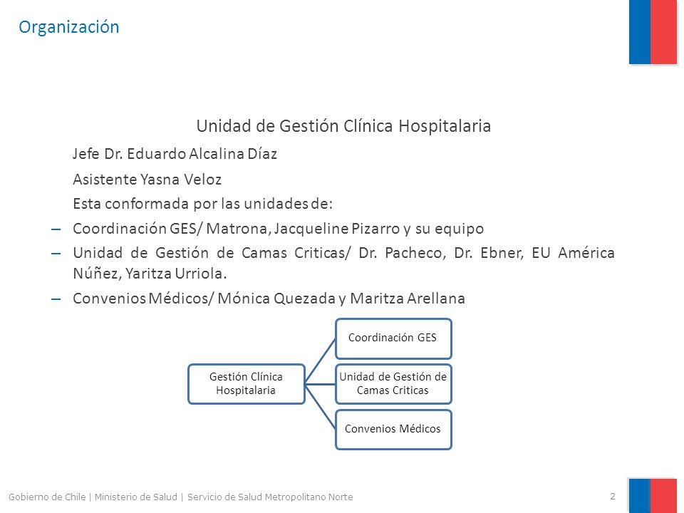 Organización Unidad de Gestión Clínica Hospitalaria Jefe Dr. Eduardo Alcalina Díaz Asistente Yasna Veloz Esta conformada por las unidades de: – Coordi
