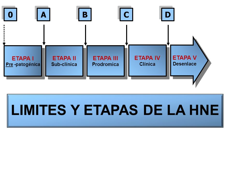 ETAPA I Pre -patogénica ETAPA I Pre -patogénica ETAPA II Sub-clínica ETAPA II Sub-clínica ETAPA III Prodromica ETAPA III Prodromica ETAPA IV Clínica ETAPA IV Clínica ETAPA V Desenlace ETAPA V Desenlace 0 0 A A B B C C D D LIMITES Y ETAPAS DE LA HNE
